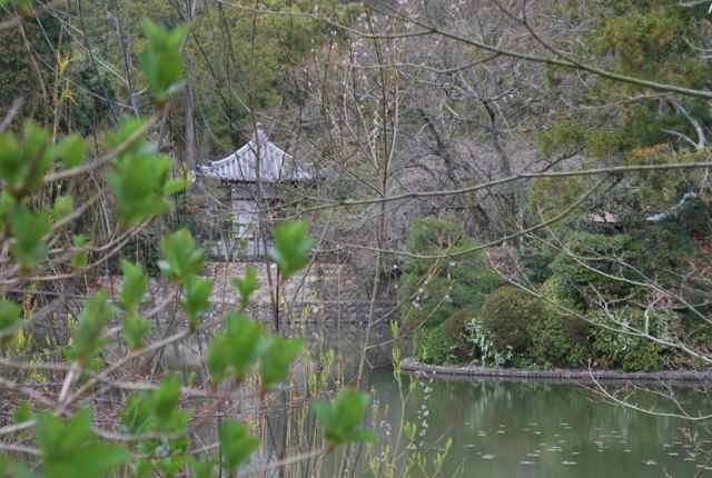 Ryoanji Temple Complex